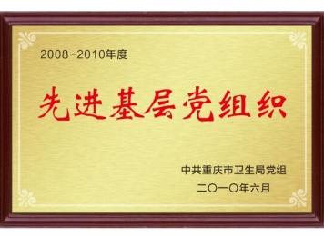 重庆市先进基层党组织