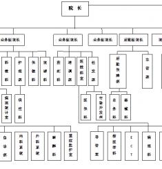 医院组织结构图(2013年)